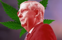 Hemp-may-soon-be-legalized