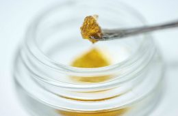 QWISO Cannabis Extract