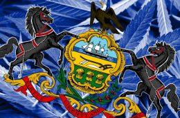 Pennsylvaniac Cannabis Flower Sales